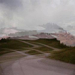 Andrea Grote: O.T (Hahnenkamp, Abfahrt im Walde I, 10.7.2020, 1min)